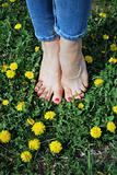 Sexy foots & yellow flowers