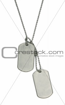 Army tags on white