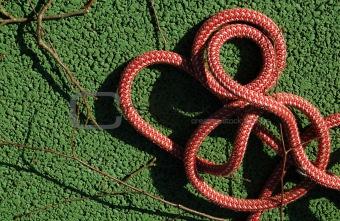 climbers rope