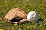 Mitt and Softball