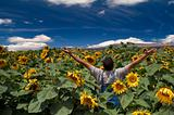 farmer in sunflower field arms spread out