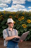 farmer in sunflower field with laptop