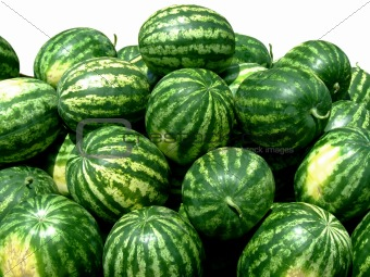 Watermelons isolated