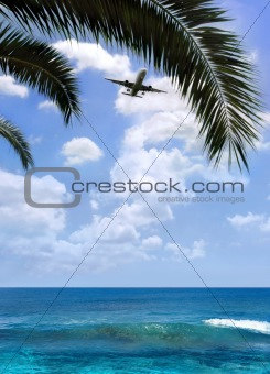 Airplane over palm