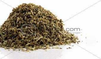 Close up of Oregano on an isolated background