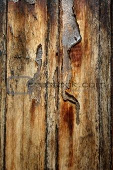 flaking varnish on old door