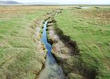 Drainage channel running through coastal salt marsh at Grange-over-sands in Cumbria