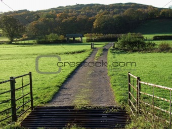 Cattle grid in Autumn morning light