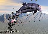 Desert Dolphin