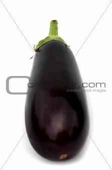 one aubergine on white background