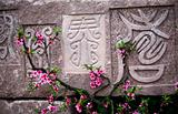 Old Chinese Characters with peach blossoms Chengdu Sichuan China