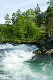 Wood river, summer
