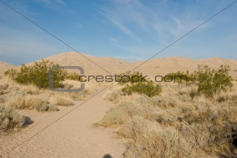 Kelso Dunes