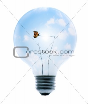 Clean Energy with Butterfly