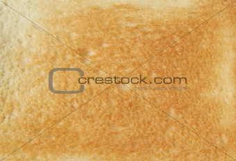 Toasted Bread Texture