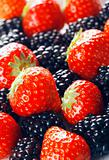 Berries close-up