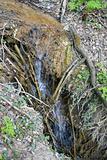 Falls on a mountain stream