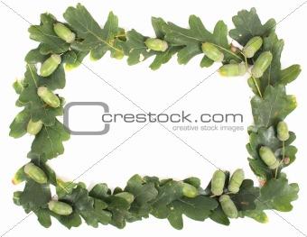 acorns frame