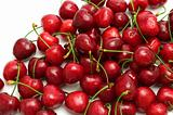 fresh wet cherry on white background