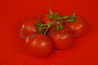 Tomatoes on red