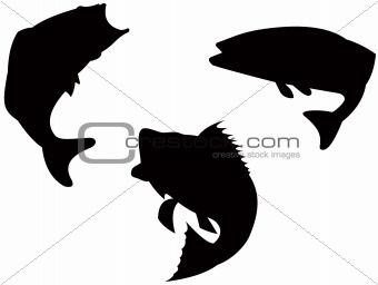 Bass silhouette