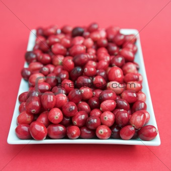 Cranberries on a white plate