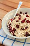 Porridge oats & dried cranberries