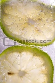 Sliced lemon in sparkling water