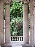 View to a Garden