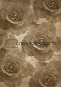 old papers texture, roses