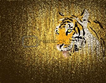 Tiger grunge