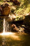 Berry Creek Falls Trail