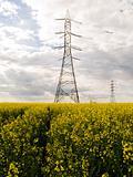 Voltage line
