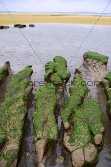 green rocks 1