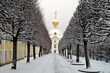 Winter's garden in Peterhof, St. Petersburg