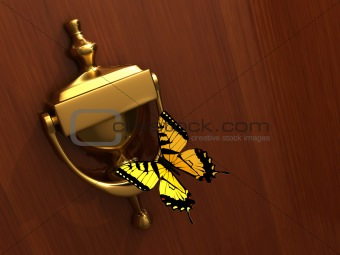 Knocker and butterfly