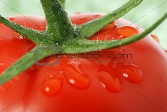 Tomato macro photo