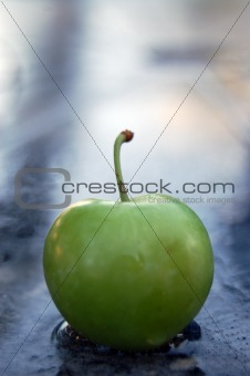 green cherry  plum