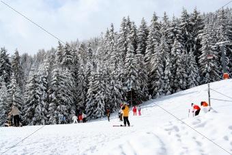 Skiers on mountain slopes
