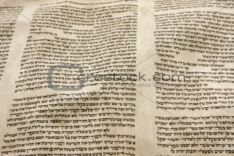 Torah Scroll Parchment