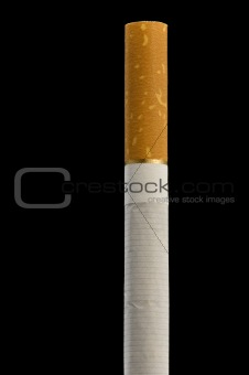 One cigarette on black