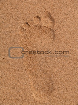 Footprint in the beach
