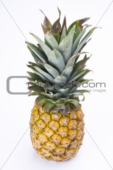 a ripe pineapple on white background