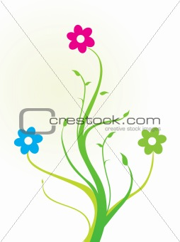 beautiful floral elements on white background