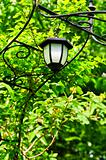 Arbor with lantern