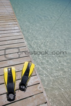 Flippers on a Jetty