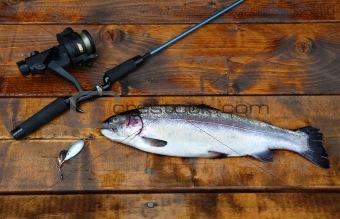 Freshly caught salmon lying on the footbridge with fishing rod