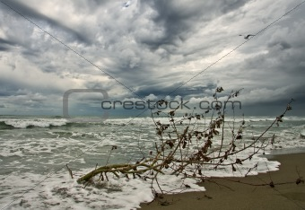 autumn beach in thunderstorm