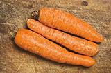Three carrots.