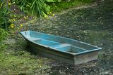 Blue Boat on Pond Shore